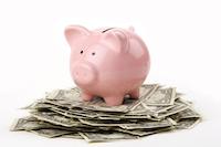 Piggy_on_Money1